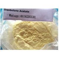 Wholesale 10161-34-9 Trenbolone Steroid Trenbolone Acetate Injection For Bodybuilding Supplements from china suppliers