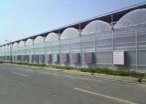 Wholesale Cooling Plastic Film Vegetable 10m Multi Span Greenhouse from china suppliers
