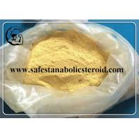 Wholesale Trenbolone Acetate Powder Tren Ace For MUSCLE  Growth Light / Dark Yellow Powder  CAS 10161-34-9 from china suppliers