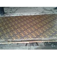 Wholesale Poplar Core Shuttering Plywood Black / Brown For Construction / Package from china suppliers