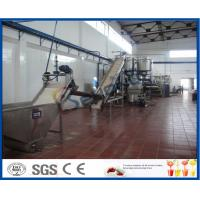Wholesale 5 - 50 T/H Mango Processing Plant With Mango Pulp Machine ISO9001 / CE / SGS from china suppliers