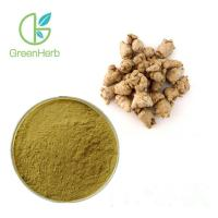 Wholesale Brown Yellow Plant Extract Powder Anti Fatigue Radix Notoginseng Extract from china suppliers