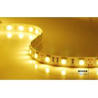 Wholesale DC12/24V 5m IP65 LED Strips Light , Energy saving Led flexible strip lights from china suppliers