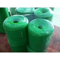Wholesale Various twisted Polypropylene Twine UV additive , strong tenacity from china suppliers