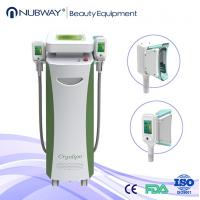 Wholesale Best Economical Cryolipolysis 2 Handles Fat Removal Equipment from china suppliers