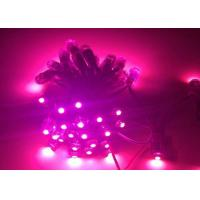 Wholesale Pink Color Addressable RGB LED Christmas Lights Low Voltage 5V Energy Saving from china suppliers
