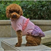 Wholesale Winter jacket dog clothes from china suppliers