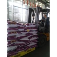 Wholesale hot sale 30g,25g,70g,90g,100g,200g clothes washing powder/laundry powder to dubai market from china suppliers