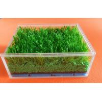 Wholesale Customized Synthetic Grass Rubber Infill For Artificial Turf , SBR Rubber Granules from china suppliers
