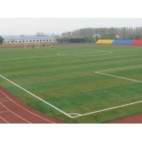 Wholesale Diamond Shape PE Futsal Landscaping Artificial Grass Recycled from china suppliers