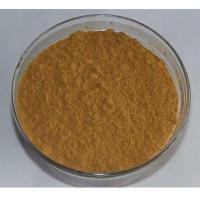 Wholesale lotus leaf extract/lotus leaf extract powder/Nuciferine 2%-98% / Flavonoids 20%-50% from china suppliers