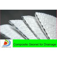 Wholesale 3D composite geonet for drainage from china suppliers
