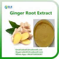 Wholesale Natural High Quality Ginger Root Extract Plant extract from china suppliers