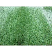 Wholesale Outdoor PE Monofilament Synthetic Commercial Artificial Grass for Garden 25mm from china suppliers