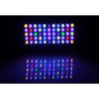 Wholesale Freshwater Reef Blue Led Aquarium Lights With Controller , Aquarium Led Plant Light from china suppliers