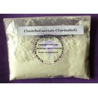 Wholesale Muscle Gain Anabolic Steroids Raw Powder Clostebol Acetate Turinabol Dosage For Sale from china suppliers