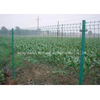 Wholesale Surround Garden Welded Wire Mesh Fence , Green Plastic Coated Wire Fencing from china suppliers