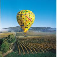 Buy cheap Colorful Outdoor Inflatable Hot Air Balloon For Tourism , Hot Air Balloon Flights from wholesalers