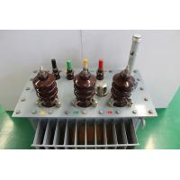 Safe Oil Filled Transformer Double Winding Load Voltage Conversion Power Transformer