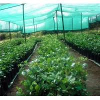 Wholesale agricultural shade net from china suppliers