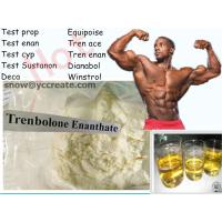 Quality 99% Purity Muscle Building Trenbolone Steroid  Trenbolone Enanthate USP31 Standard for sale