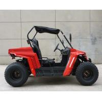 Quality Footbrake / Hydraulic Disc 150cc Gas Utility Vehicles For Kids / Adults EEC EPA DOT for sale