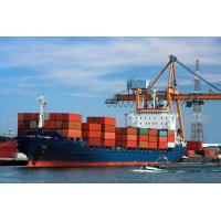 Wholesale competitive price international bulk shipping rates from China famous supplier from china suppliers