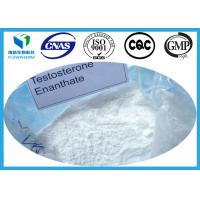 Wholesale Testosterone Enanthate Testosterone Anabolic Steroid Test E Powder CAS 315-37-7 Primoteston Depot from china suppliers