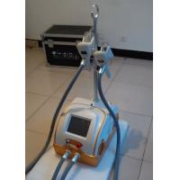 Wholesale 2 Cyo Handles Skin Care Fat Loss Cryolipolysis Slimming Machine To Weight Loss from china suppliers