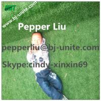 Wholesale Artificial Grass Rug For Children from china suppliers