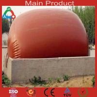 Wholesale High technology home biogas plant from china suppliers
