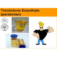 Wholesale Tren E / Trenbolone Enanthate Injectable Anabolic Steroids ( Parabolan 100 & 200mg / ml ) Cas 10161-33-8 from china suppliers