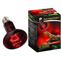 Quality Super Reptile Repti Red Nightlight for sale