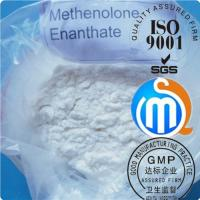 Wholesale Primobolan Cutting Cycle Steroids Methenolone Enanthate For Muscle Growth from china suppliers