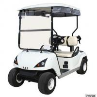 Wholesale 2 person electric golf buggy cheap DG-C2 with CE certificate from china suppliers