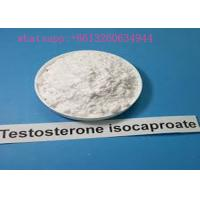Quality Steroid Testosterone Isocaproate In Powder Form For Muscle Building Cas 15262-86-9 for sale