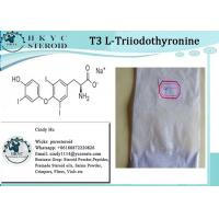 Wholesale Healthy Effective Raw Hormone White Powder L-Triiodothyronine T3 For Weight Loss from china suppliers