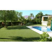 Wholesale 12800Dtex Monofilament Yarn Artificial Garden Artificial Grass for Home 20mm from china suppliers