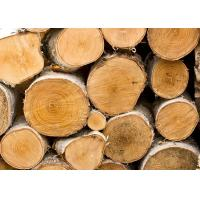Wholesale Romanian Beech Wood Timber Supplier from china suppliers