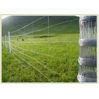 Wholesale Professional Galvanized Coating Woven Livestock Mesh Wire Fencing For Dogs from china suppliers