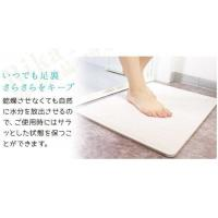 Wholesale Rapid Water Absorption Diatomite Bath Mat Instant Drying Waterproof Eco Friendly from china suppliers