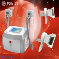 Wholesale Portable Cryolipolysis Equipment / Zeltip Cryolipolysis Machine / Vacuum + lipo laser from china suppliers