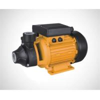 Wholesale Vortex pump/Peripheral pump/Surface pump PM45/80 from china suppliers