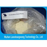Wholesale Healthy Trenbolone Enanthate Powder Legal Muscle Steroid Cutting Cycle CAS 472-61-546 from china suppliers