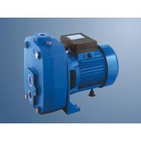 Wholesale SUNWARD ZB Series 0.55kW Household Water Pump from china suppliers