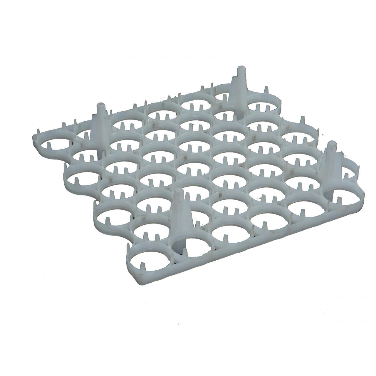 Wholesale Egg rack from china suppliers