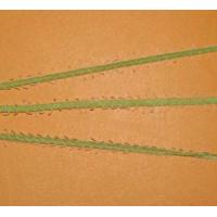 Wholesale Tape yarn from china suppliers