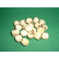 Wholesale Vegetable Series lotus seed from china suppliers