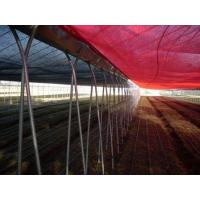 Wholesale Ventilation Greenhouse-Hercules from china suppliers