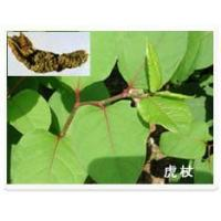 Wholesale Resveratrol from china suppliers